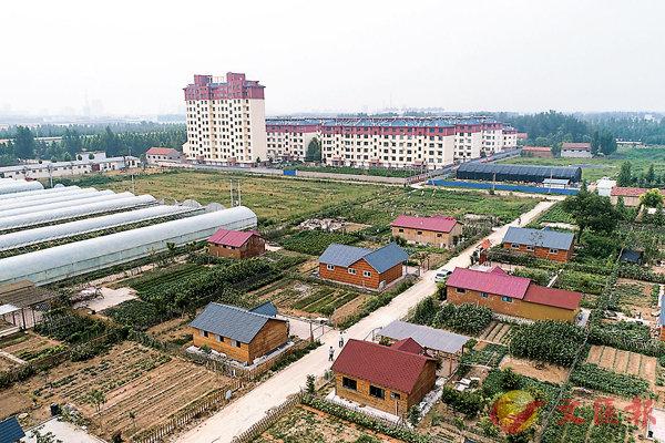 ■山東省高青縣堅持耕地保護制度,實施舊村復墾復綠工作。 資料圖片