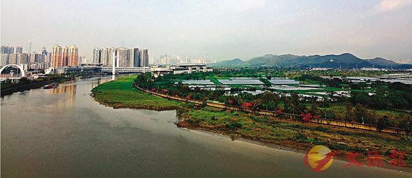 ■督委會將會負責擬定灣區策略性目標,發展辦則負責對外工作。圖為香港落馬洲河套地區。 資料圖片