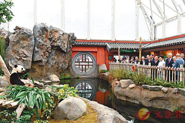 ■林鄭月娥和彭清華探望海洋公園內的熊貓。  中通社