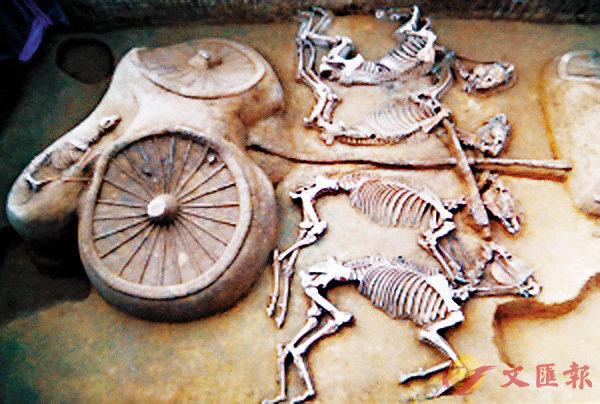 ■ 在考古學家的清理下,一輛於2017年河北發現的豪華馬車顯出了珍貴的細節。圖為該殉葬坑中的一車馬坑。 網上圖片