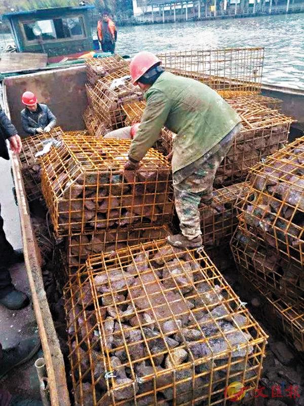 ■杭州城管局近日完成對拱宸橋進行水下加固。圖為工人將石塊裝入鋼筋石籠。 網上圖片