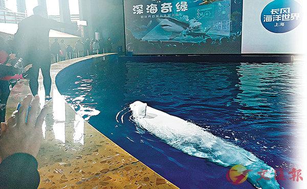 ■白鯨姐妹向觀眾揮手告別。 香港文匯報記者倪夢璟  攝