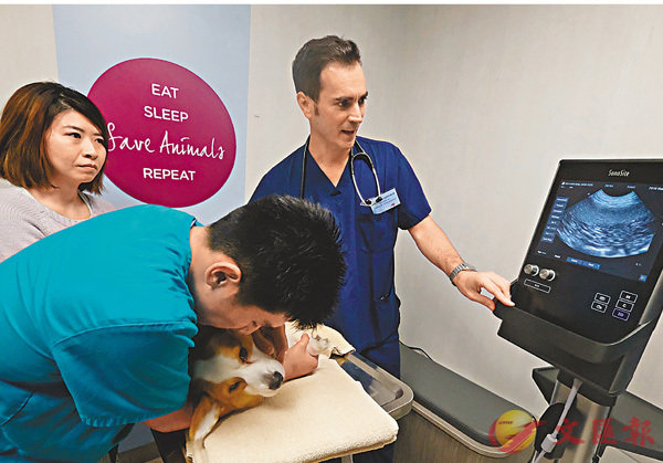 ■城大的新動物醫療中心是東南亞最大的獸醫診所。香港文匯報記者梁祖彝  攝