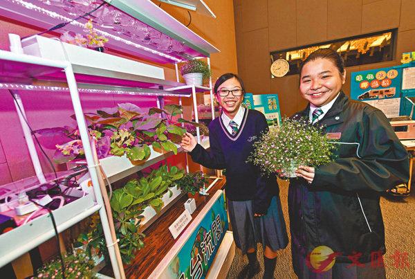 ■參賽隊伍打造流動智能溫室「綠台流閣」,即使在狹窄的室內空間亦能享受種植樂。 作者供圖