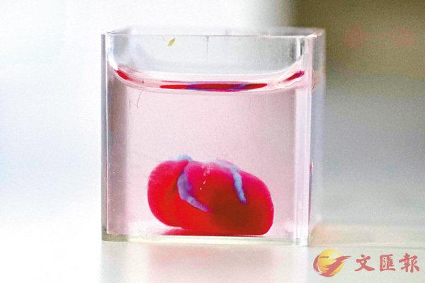 ■以色列特拉維夫大學的科學家成功3D打印出全球首個包含人體組織和血管的心臟。 法新社