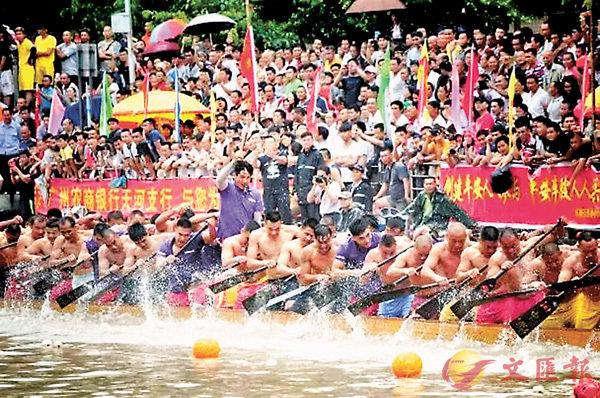 ■獵德村端午龍舟每年吸引上萬民眾觀看。   網上圖片
