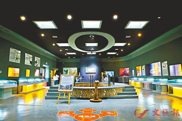 ■濟贊堂古生物化石博物館。 受訪者供圖