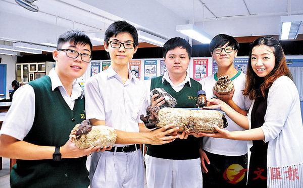 ■同學試驗可減少污染問題的「菌絲子彈」新技術。 作者供圖