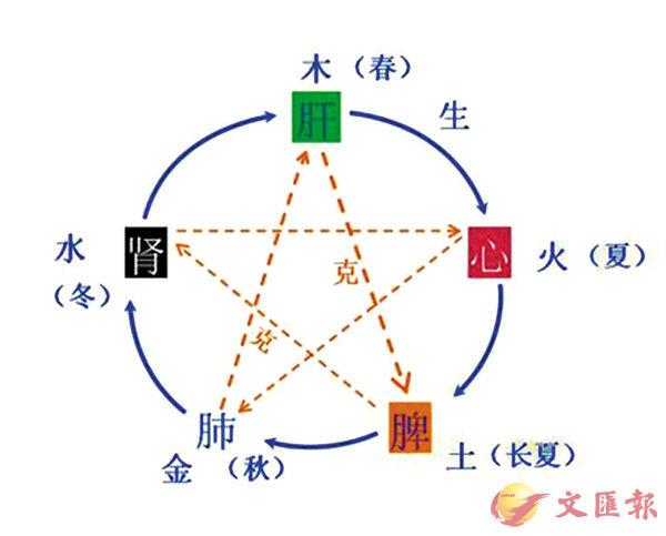 ■陰陽家認為萬物都與五行有關,學說影響整個中國文化,甚至連中醫也受其影響。 資料圖片