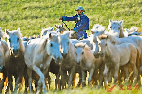 ■根據公孫龍的邏輯,白馬和馬是兩個概念,並不相同。 資料圖片