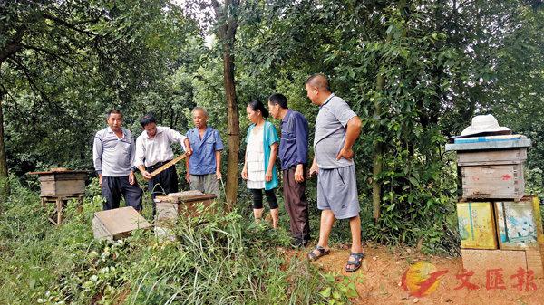 ■段仁義為村裡養蜂戶講解養蜂技術。受訪者供圖