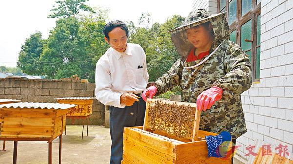 ■段仁義為貧困戶潘群芳悉心傳授養蜂技術。     香港文匯報記者姚進  攝