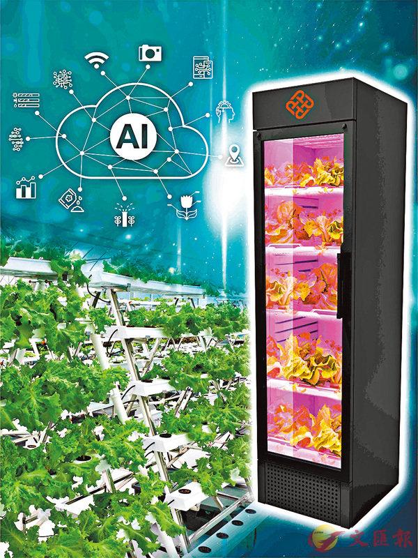 ■理大研發的「智能室內種植系統」於「矽谷國際發明展」中奪得特別大獎及特別金獎。 理大圖片