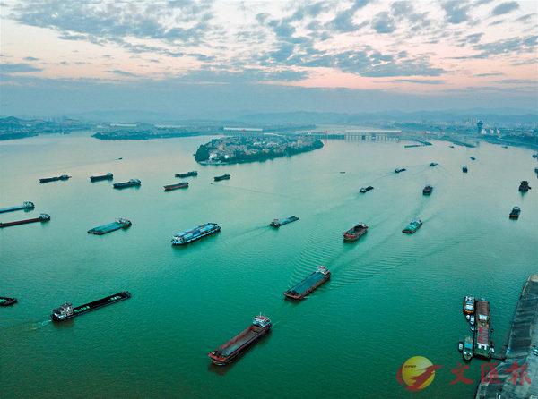 ■珠江黃金水道百舸爭流。 網上圖片