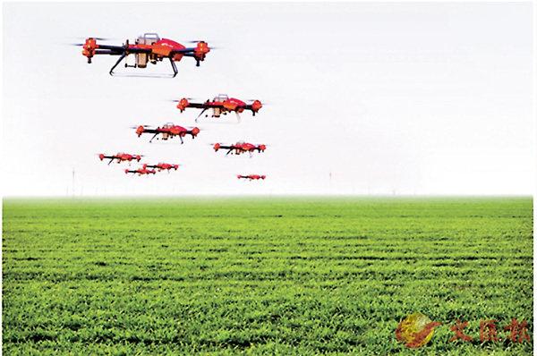 ■無人機在華北平原糧食產區進行植保作業。 網上圖片