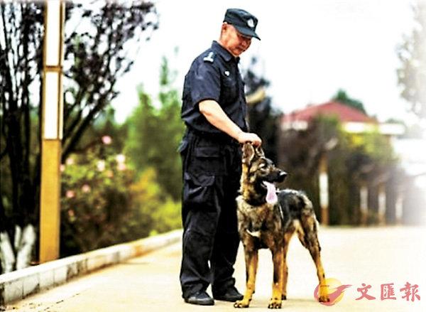 ■「昆勳」在昆明警犬基地進行「培訓」。 網上圖片