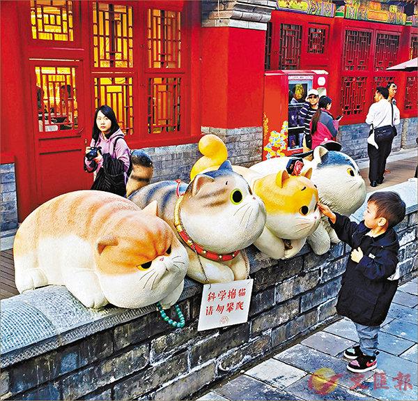 ■四隻可愛的「御貓」並排趴在宮牆上。 香港文匯報記者周琳 攝