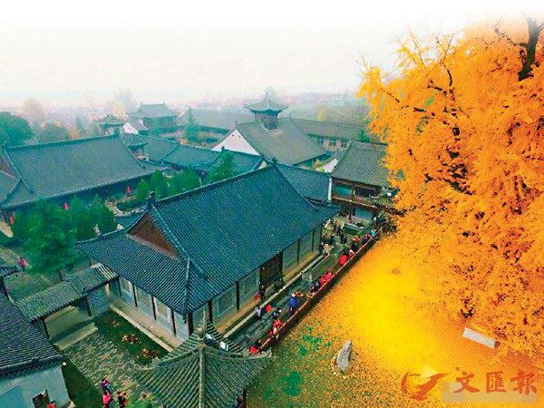 去年開始,古觀音禪寺實施網上預約限流的模式。網上圖片