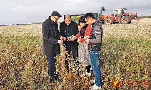 ■愛菊集團董事長賈合義(左二)與科研人員在哈薩克斯坦種植基地調研。 受訪者供圖