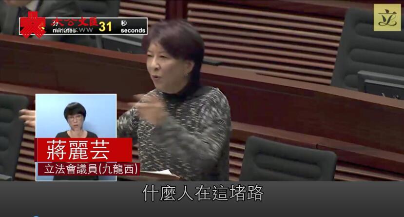 蔣麗芸立法會上怒斥泛民包庇暴徒禍亂香港