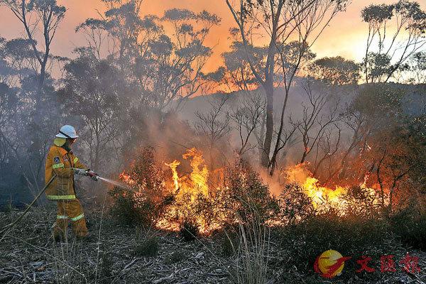 ■澳洲山火嚴重影響澳洲生態環境。 資料圖片