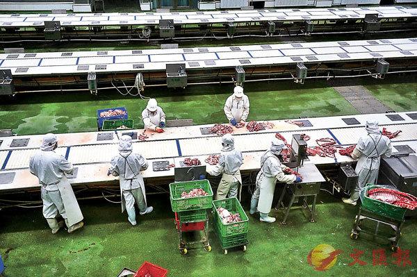 ■工廠內加工流水線上的工人們正在分割鮮豬肉。香港文匯報記者于海江  攝