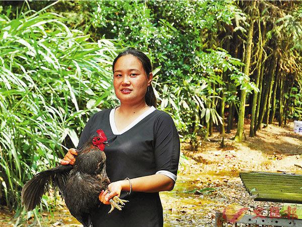 ■「雞司令」吳桂香