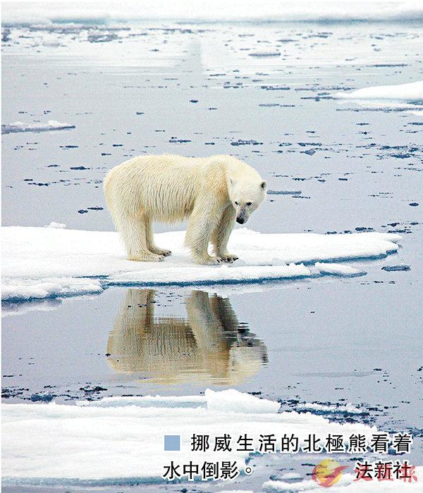 挪威北極圈群島21.7℃ 飆歷史新高