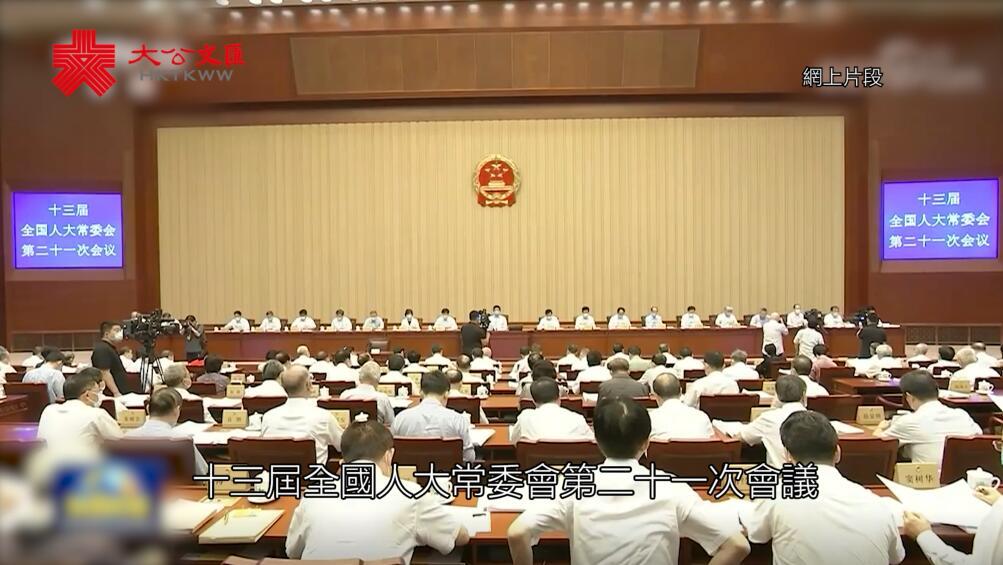 全國人大常委會全票通過 港立法會全體議員延任不少於一年