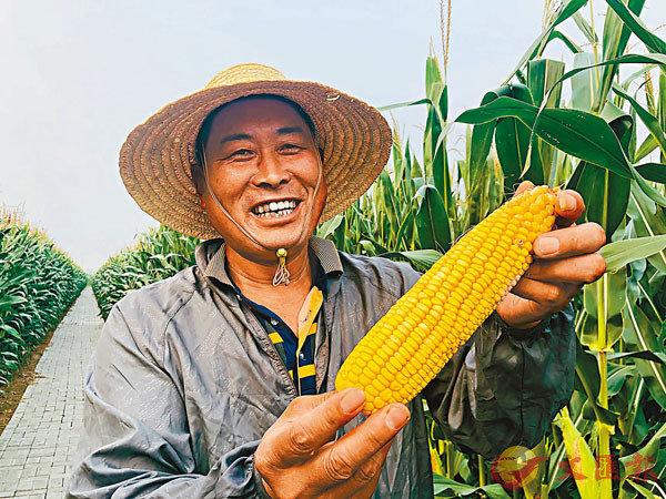 ■李建國說,今年是一個豐收年。香港文匯報記者丁春麗  攝