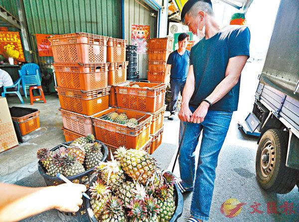 ●2月26日,在盛產菠蘿的台南關廟區,菠蘿商農在工作。 中通社
