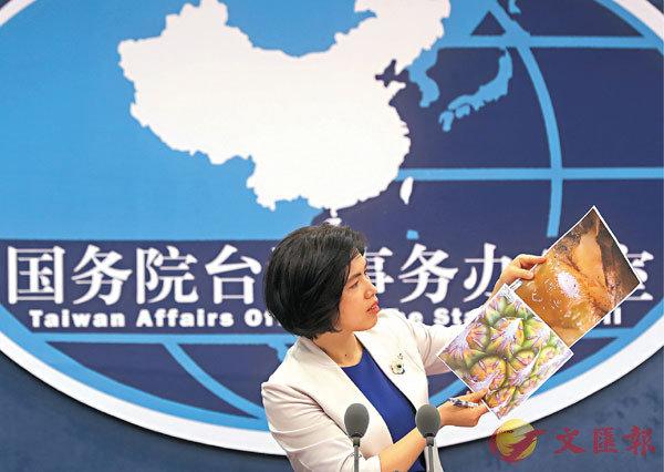 ●3月31日,朱鳳蓮向現場記者展示由大陸相關部門提供的菠蘿害蟲照片。  中新社