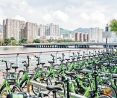 共享單車在港惹爭議